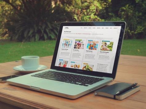Cómo crear tu blog profesional con WordPress desde cero | IMAGEN Lynx - WordPress Theme - productshot BY Serge Kij