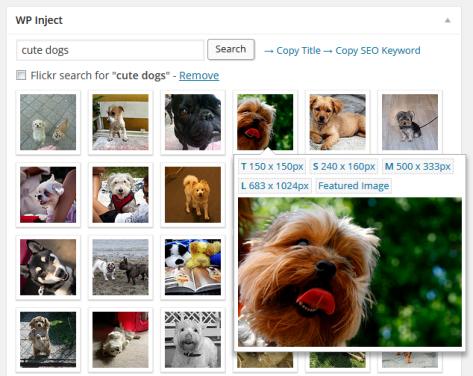 WP Inject Plugin para imágenes libres en WordPress | IMAGEN: WP Inject