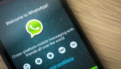 whatsapp profesores
