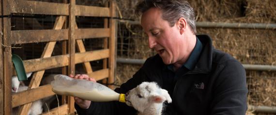 El #PigGate de David Cameron